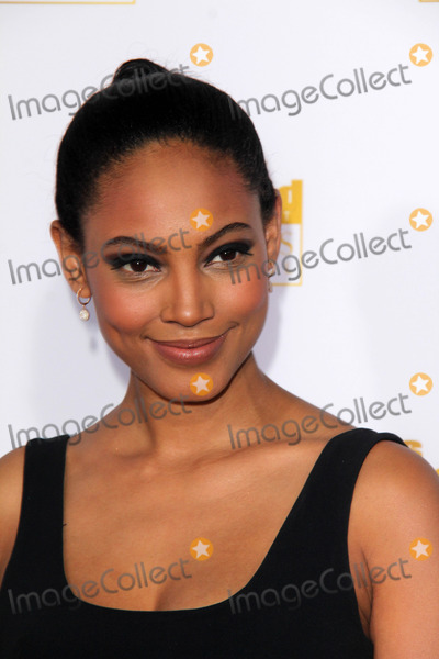 Ariel Meredith Photo - LOS ANGELES - JAN 14:  Ariel Meredith at the 50th Anniversary Of Sports Illustrated Swimsuit Issue at Dolby Theater on January 14, 2014 in Los Angeles, CA