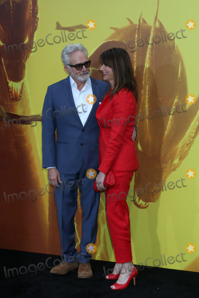 """Amy Landecker, Bradley Whitford Photo - LOS ANGELES - MAY 18:  Bradley Whitford, Amy Landecker at the """"Godzilla: King Of The Monsters"""" Premiere at the TCL Chinese Theater IMAX on May 18, 2019 in Los Angeles, CA"""