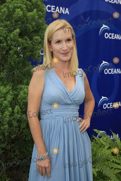 Angela Kinsey Photo - LOS ANGELES - AUG 18:  Angela Kinsey at the Oceana's 6th Annual SeaChange Summer Party at the Beverly Hilton Hotel on August 18, 2013 in Beverly Hills, CA