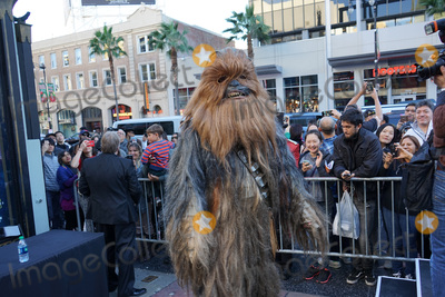 Chewbacca Photo - LOS ANGELES - DEC 17:  Chewbacca at the Australian Star Wars fans get married in a Star Wars-themed wedding at the TCL Chinese Theater on December 17, 2015 in Los Angeles, CA
