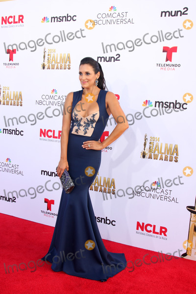Angelique Cabral, Angelique  Cabral Photo - LOS ANGELES - OCT 10:  Angelique Cabral at the 2014 NCLR ALMA Awards at Civic Auditorium on October 10, 2014 in Pasadena, CA