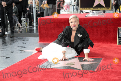 Alecia Moore, Pink, Pink (Alecia Moore) Photo - LOS ANGELES - FEB 5:  Pink, Alecia Moore at the Pink Star Ceremony on the Hollywood Walk of Fame on February 5, 2019 in Los Angeles, CA