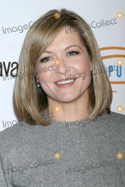 Ali Hillis Photo - LOS ANGELES - NOV 21:  Ali Hillis at the Lupus LA Bag Ladies Luncheon at the Beverly Hilton Hotel on November 21, 2014 in Beverly Hills, CA