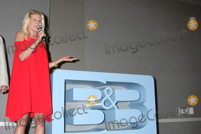 Alley Mills Photo - LOS ANGELES - AUG 20:  Alley Mills at the Bold and the Beautiful Fan Event 2017 at the Marriott Burbank Convention Center on August 20, 2017 in Burbank, CA