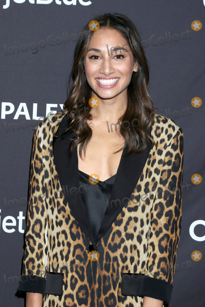 """Meaghan Rath Photo - LOS ANGELES - MAR 23:  Meaghan Rath at the PaleyFest - """"Hawaii Five-0,"""" """"MacGyver,"""" and """"Magnum P.I."""" Event at the Dolby Theater on March 23, 2019 in Los Angeles, CA"""