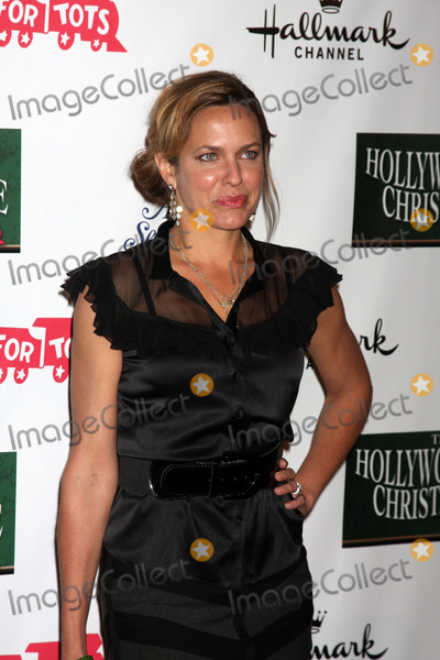 Arianne Zucker Photo - LOS ANGELES - NOV 25:  Arianne Zucker arrives at the 2012 Hollywood Christmas Parade at Hollywood & Highland on November 25, 2012 in Los Angeles, CA