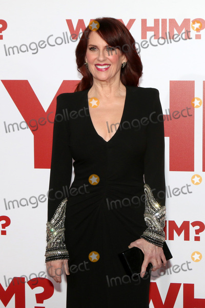 "Megan Mullally Photo - LOS ANGELES - DEC 17:  Megan Mullally at the ""Why Him?"" Premiere at Bruin Theater on December 17, 2016 in Westwood, CA"