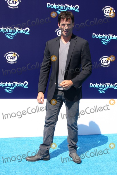 "Austin Stowell Photo - LOS ANGELES - SEP 7:  Austin Stowell at the ""Dolphin Tale 2"" Prmiere at Village Theater on September 7, 2014 in Westwood, CA"