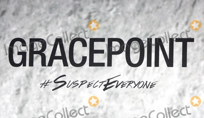 """Photo - LOS ANGELES - SEP 30:  Atmosphere at the """"Gracepoint"""" Premiere Party at LACMA on September 30, 2014 in Los Angeles, CA"""