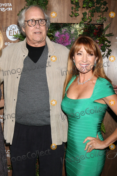 Chevy Chase, Four Seasons, Jane Seymour, The Four Seasons Photo - LOS ANGELES - FEB 20:  Chevy Chase, Jane Seymour at the Global Green 2019 Pre-Oscar Gala at the Four Seasons Hotel on February 20, 2019 in Beverly Hills, CA