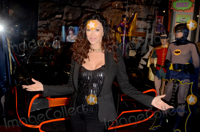 Batman, Sofia Milos Photo - LOS ANGELES - JAN 10:  Sofia Milos at the Batman '66 Retrospective and Batman Exhibit Opening Night at the Hollywood Museum on January 10, 2018 in Los Angeles, CA