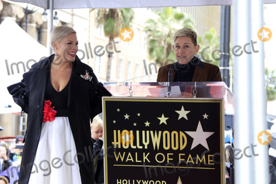 Ellen De Generes, Pink Photo - LOS ANGELES - FEB 5:  Pink, Ellen DeGeneres at the Pink Star Ceremony on the Hollywood Walk of Fame on February 5, 2019 in Los Angeles, CA