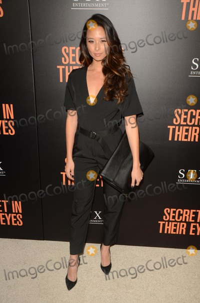 "Aja Dang Photo - LOS ANGELES - NOV 11:  Aja Dang at the ""Secret In Their Eyes"" Los Angeles Premiere at the Hammer Museum on November 11, 2015 in Westwood, CA"