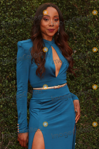 ASH, Erica Ash Photo - LOS ANGELES - JAN 15:  Erica Ash at the 49th NAACP Image Awards - Arrivals at Pasadena Civic Center on January 15, 2018 in Pasadena, CA