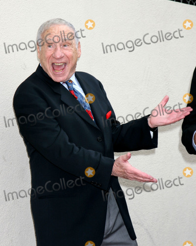Alan Ladd, Mel Brooks Photo - Mel Brooks 