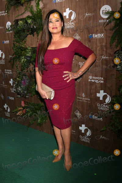 Four Seasons, The Four Seasons, Tia Carrere Photo - LOS ANGELES - FEB 20:  Tia Carrere at the Global Green 2019 Pre-Oscar Gala at the Four Seasons Hotel on February 20, 2019 in Beverly Hills, CA