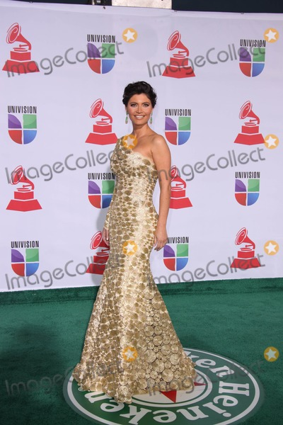 Chiquinquira Delgado, Grammy Awards Photo - LOS ANGELES - NOV 10:  Chiquinquira Delgado arrives at the 12th Annual Latin GRAMMY Awards at Mandalay Bay on November 10, 2011 in Las Vegas, NV