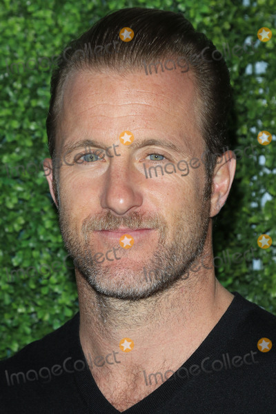 Scott Caan, Scott  Caan Photo - LOS ANGELES - JUN 2:  Scott Caan at the 4th Annual CBS Television Studios Summer Soiree at the Palihouse on June 2, 2016 in West Hollywood, CA