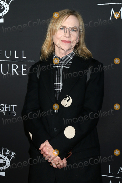 Amy Madigan Photo - LOS ANGELES - JAN 16:  Amy Madigan at the The Last Full Measure Premiere - Arrivals at the ArcLight Hollywood on January 16, 2020 in Los Angeles, CA