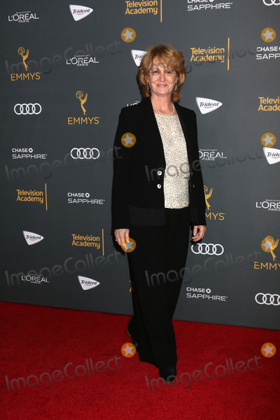 Melissa Leo Photo - LOS ANGELES - SEP 16:  Melissa Leo at the TV Academy Performer Nominee Reception at the Pacific Design Center on September 16, 2016 in West Hollywood, CA