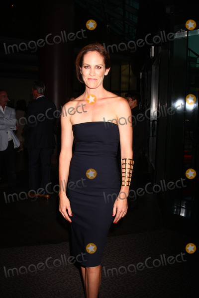 """Annabeth Gish Photo - LOS ANGELES - JUL 8:  Annabeth Gish arrives at """"The Bridge"""" FX Network Premiere Screening at the Directors Guild of America on July 8, 2013 in Los Angeles, CA"""