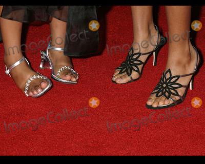 Aree Davis Photo - Deedee & Aree Davis37th NAACP Image AwardsShrine AuditoriumLos Angeles, CAFebruary 25, 2006                 V