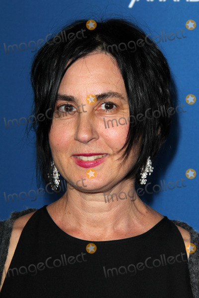 Amy Schatz Photo - LOS ANGELES - JAN 25:  Amy Schatz at the 66th Annual Directors Guild of America Awards at Century Plaza Hotel on January 25, 2014 in Century City, CA