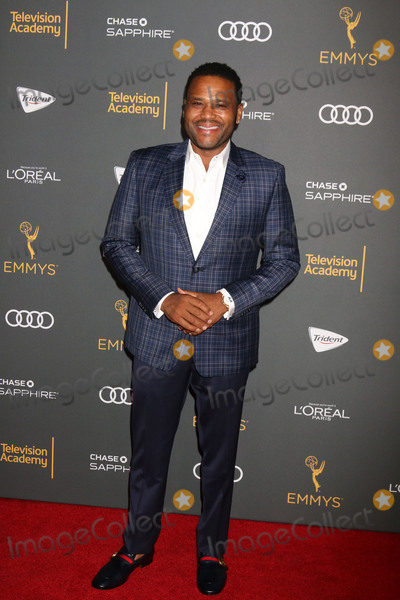 Anthony Anderson Photo - LOS ANGELES - SEP 16:  Anthony Anderson at the TV Academy Performer Nominee Reception at the Pacific Design Center on September 16, 2016 in West Hollywood, CA