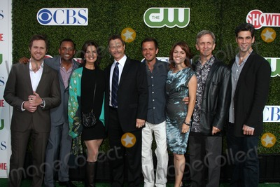 AJ Buckley, Gary Sinise, Hill Harper, Sela Ward, Anna Belknap, Carmine Giovinazzo, Eddie Cahill, Robert Joy Photo - LOS ANGELES - JUL 28:  CSI: NY Cast - Aj Buckley, Hill Harper, Sela Ward, Gary Sinise, Carmine Giovinazzo, Anna Belknap, Robert Joy & Eddie Cahill arrives at the 2010 CBS, The CW, Showtime Summer Press Tour Party  at The Tent Adjacent to Beverly Hilton Hotel on July28, 2010 in Beverly Hills, CA