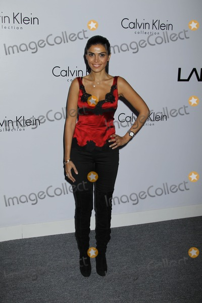 Calvin Klein, Sheila Shah Photo - Los Angeles, CA 1/28/2010Sheila ShahCalvin Klein Collection & Los Angeles Nomadic Division (LAND) 1st Annual Celebration For L.A. Arts Monthly and Art Los Angeles Contemporary (ALAC).Photo by Nick Sherwood-PHOTOlink.net