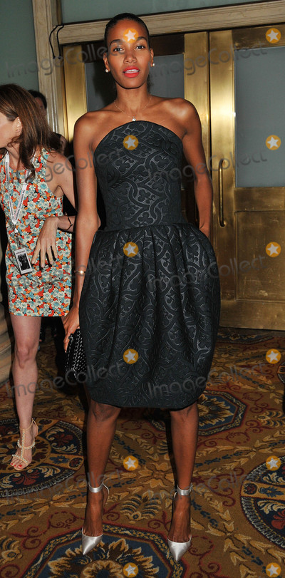 Arlenis Sosa, Gordon Parks Photo - Photo by: Demis Maryannakis/starmaxinc.comSTAR MAX2015ALL RIGHTS RESERVEDTelephone/Fax: (212) 995-11966/2/15Arlenis Sosa at The Gordon Parks Foundation Awards Dinner And Auction at Cipriani Wall Street.(NYC)