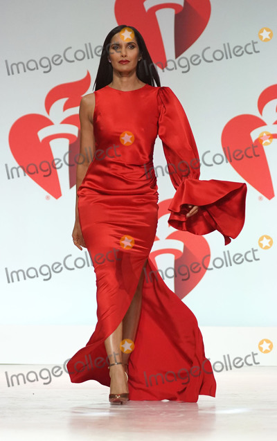 Padma Lakshmi Photo - Photo by: zz/John Nacion/starmaxinc.com