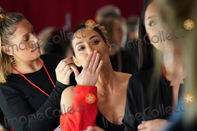 Brie Bella Photo - Photo by: zz/John Nacion/starmaxinc.com