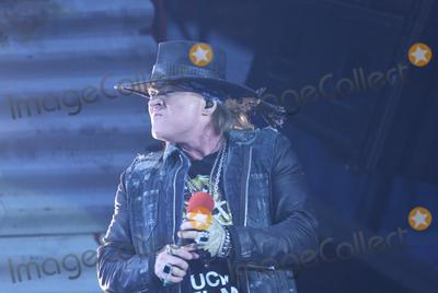 AC/DC, Axl Rose, Hüsker Dü Photo - Singer AXL ROSE, AC/DC-concert, Hamburg, Volksparkstadion, 26.05.2016