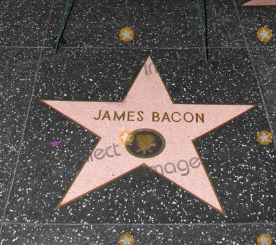 James Bacon, American Authors Photo - The Hollywood Walk of Fame star dedicated to American author, Associated Press journalist and actor James Bacon.  Bacon, who passed away on September 18, aged 96, was known for his work that chronicled the lives of Hollywood's most famous stars. Los Angeles, CA. 09/20/10.