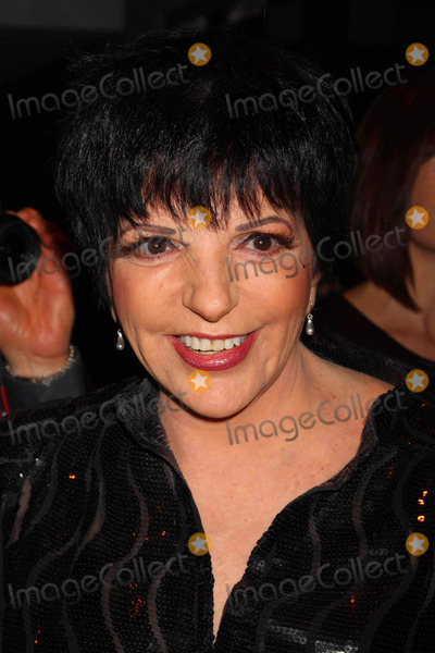 Liza Minnelli Photo - Liza Minnelli Arriving at the 54th Annual Drama Desk Awards at Fh Laguardia Concert Hall at Lincoln Center in New York City on 05-17-2009. Photo by Henry Mcgee-Globe Photos, Inc. 2009.