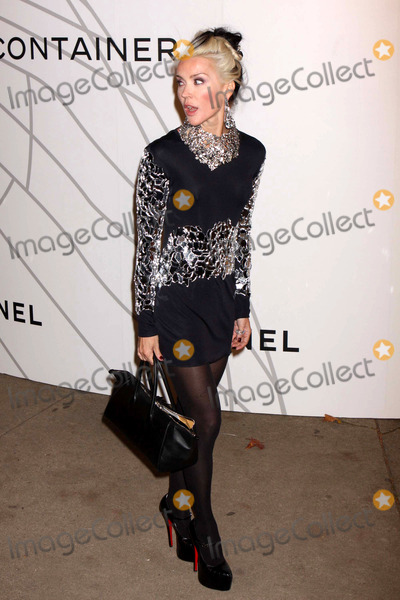 Daphne Guinness, Zaha Hadid, Guines Photo - Daphne Guinness Arriving at the Opening Party For Mobile Art: Chanel Contemporary Art Container by Zaha Hadid at Rumsey Playfield, Central Park in New York City on 10-21-2008. Photo by Henry Mcgee/Globe Photos, Inc. 2008.