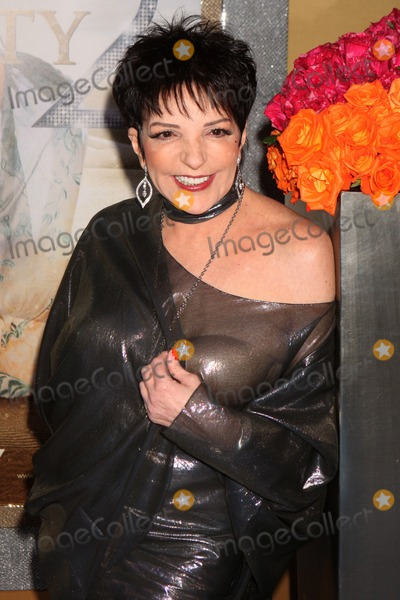 liza minnelli sex and the city