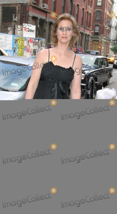 "Cynthia Nixon Photo - NYC  06/15/05Cynthia Nixon (dressed in an Armani dress, shoes and handbag) at ""A TOAST AT TWILIGHT XV"" Cocktail Reception Benefiting Gay Men's Health Crisis (GMHC) at Armani CasaDigital Photo by Adam Nemser-PHOTOlink.org"