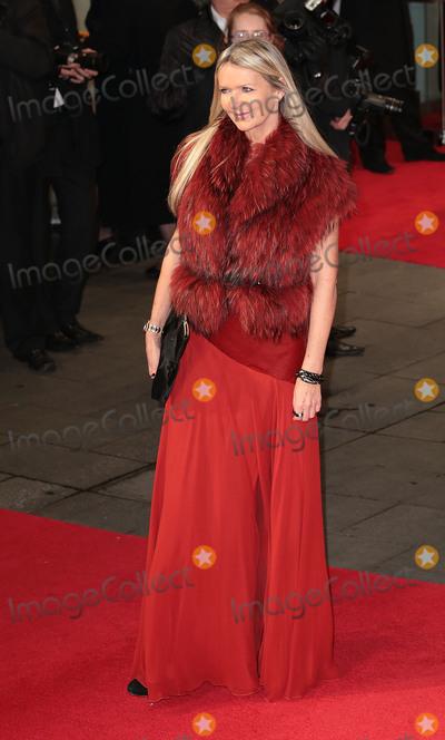 Amanda Wakely, Leicester Square Photo - Dec 05, 2013 - London, England, UK - The Royal Film Performance - Mandela: Long Walk To Freedom, Odeon Leicester SquarePictured: Amanda Wakely