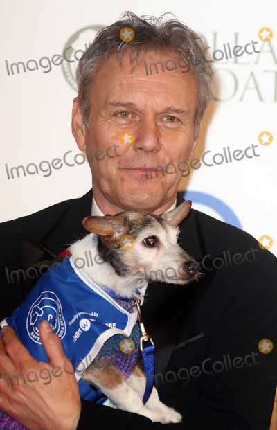 Anthony Head Photo - Nov 12, 2015 - London, England, UK - Anthony Head attending Battersea Dogs & Cats Home Collars And Coats Gala Ball