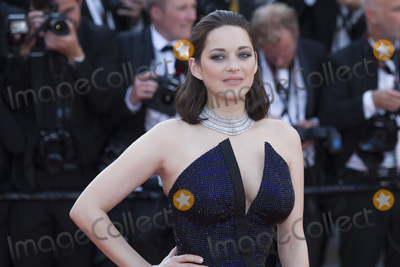 Marion Cotillard Photo - CANNES, FRANCE - MAY 23: Marion Cotillard attends the 70th Anniversary screening during the 70th annual Cannes Film Festival at Palais des Festivals on May 23, 2017 in Cannes, France.(Photo by Laurent Koffel/ImageCollect.com)