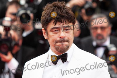 Benicio Del Toro Photo - CANNES, FRANCE - MAY 8: Benicio Del Toro attends the screening of 'Everybody Knows (Todos Lo Saben)' and the opening gala during the 71st annual Cannes Film Festival at Palais des Festivals on May 8, 2018 in Cannes, France. (Photo by Laurent Koffel/ImageCollect.com)