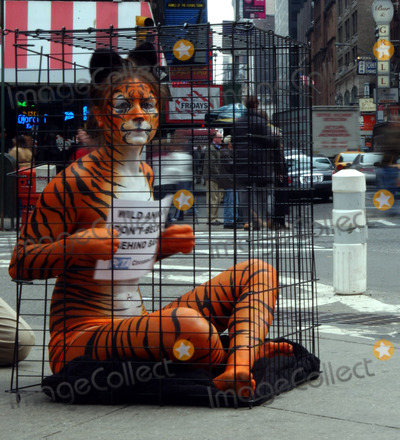 AMY JANNETTE, Nudes Photo - Amy Jannette, her nearly-nude body paint helping with PETA