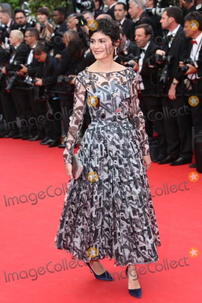 Audrey Tautou Photo - My 14 2014, Cannes  Audrey Tautou arriving at the opening ceremony and the 'Grace of Monaco' Premiere at the 67th Annual Cannes Film Festival on May 14, 2014 in Cannes, France.
