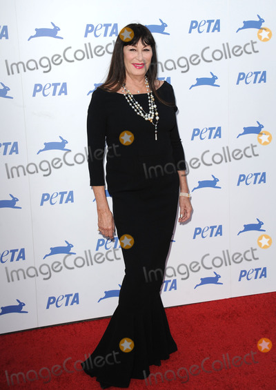 Anjelica Huston Photo - 