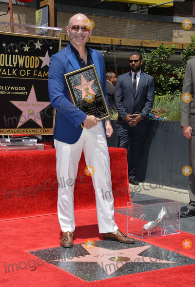 Pitbull Photo - LOS ANGELES, CA. July 15, 2016: Singer Pitbull (Armando Christian Perez) on Hollywood Blvd where he was honored with the 2,584th star on the Hollywood Walk of Fame.Picture: Paul Smith / Featureflash