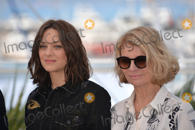 """Marion Cotillard, Nicole Garcia Photo - Actress Marion Cotillard & director Nicole Garcia at the photocall for """"From the Land of the Moon"""" (""""Mal de Pierres"""") at the 69th Festival de Cannes.May 15, 2016  Cannes, FrancePicture: Paul Smith / Featureflash"""