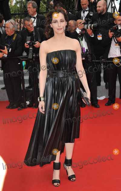 "Amira Casar Photo - Amira Casar at the gala premiere of ""The Search"" at the 67th Festival de Cannes.