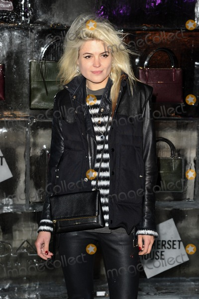 Alison Mosshart Photo - Alison Mosshart arriving for the opening of the Somerset House Ice Rink 2013, London 14/11/2013 Picture by: Steve Vas / Featureflash